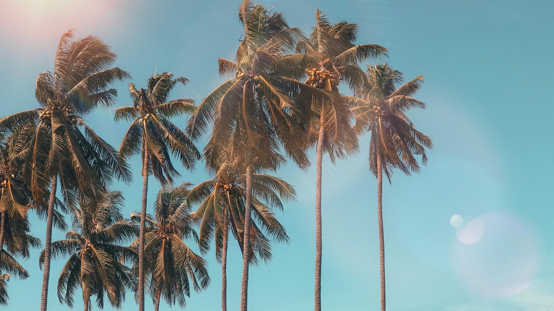 San Crisanto Beach Villas - Caban Condos - Meet Merida, Yucatán